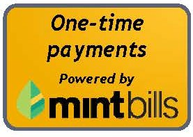 Mint Bills One Time Payments